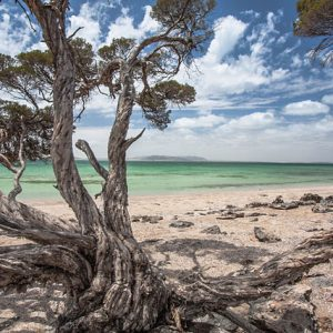 coffin bay south australia