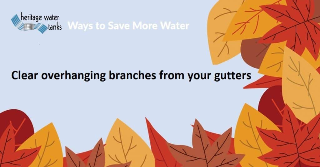Clear Overhanging branches from your gutters