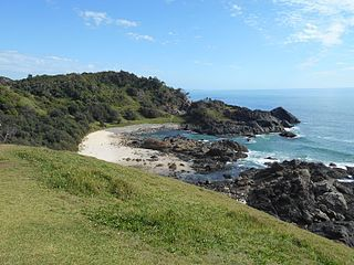 Coastline_of_Sea_Acres_National_Park,_Port_Macquarie_NSW
