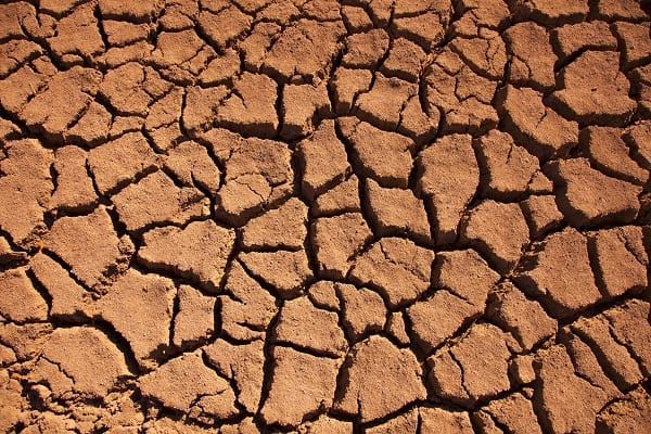 Parched earth Drought