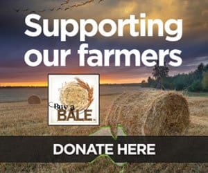 donate button buy a bale